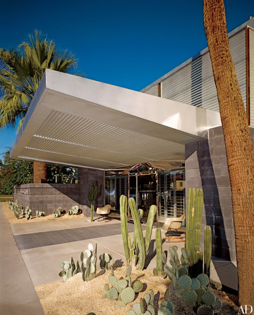 Những khu vườn sa mạc ấn tượng xung quanh nhà