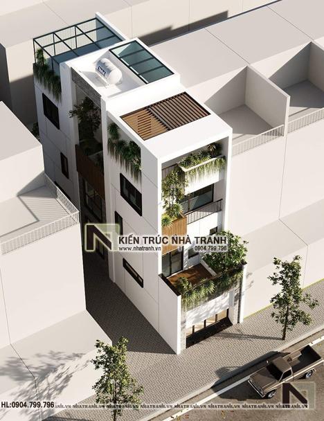 Ảnh: Phối cảnh tổng thể 03 mẫu nhà phố 4 tầng nhiều cây xanh NT-L3681